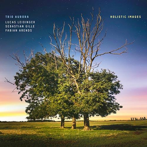 Trio Aurora, Holistic Images, Klaeng-records 049 CD, Lucas Leidinger, Sebastian Gille, Fabian Arends, Christian Heck, aufgenommen, recorded, LOFT, Cologne, Köln